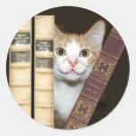 Cat and books classic round sticker