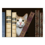 Cat and books greeting card