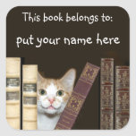 Cat and books name square sticker