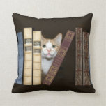 Cat and books pillows