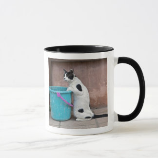Cat and bucket, Chania, Crete, Greece Mug