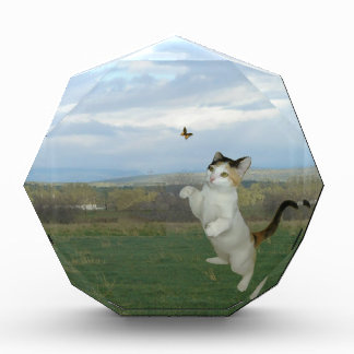 Cat And Butterfly Award