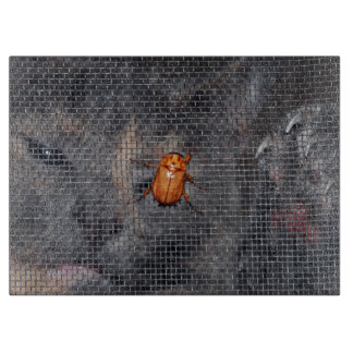 Cat and Christmas Beetle Cutting Boards