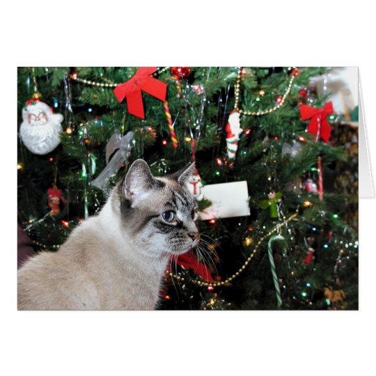 Cat and Christmas tree Card