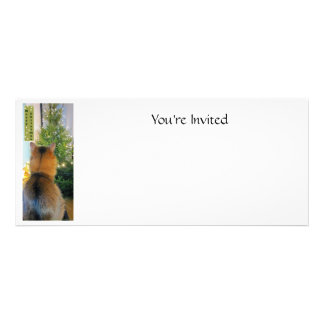 Cat and Christmas Tree Personalized Invitation