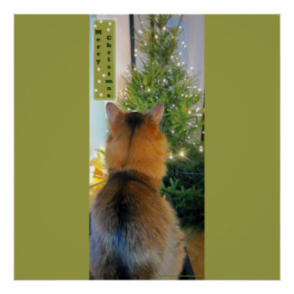 Cat and Christmas Tree Poster