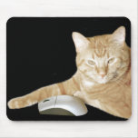 Cat and computer mouse mouse mat