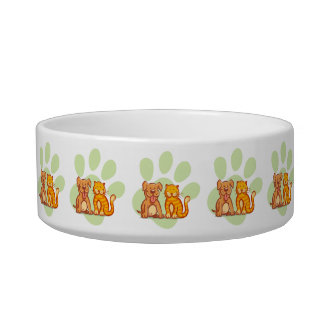 Cat and dog bowl
