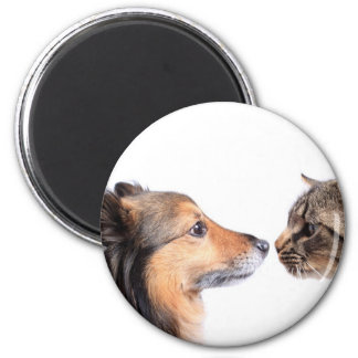 Cat and dog nose to nose magnets