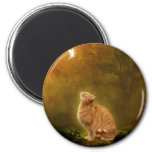 Cat And Fairy 2 Inch Round Magnet