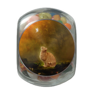 Cat and Fairy Jelly Belly Candy Jar