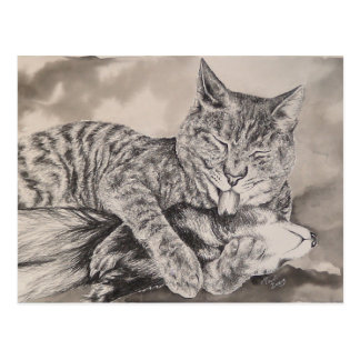 Cat and Ferret Postcard