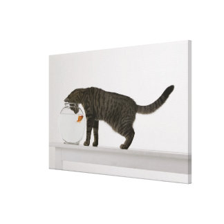 Cat and goldfish canvas print