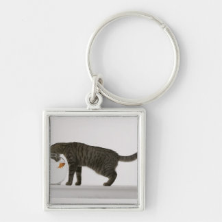 Cat and goldfish keychain