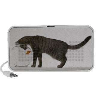 Cat and goldfish mini speaker