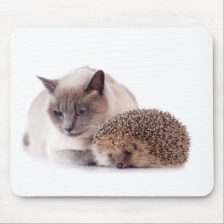 cat and hedgehog mouse pad