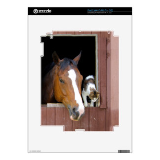 Cat and horse - horse ranch - horse lovers iPad 2 skins