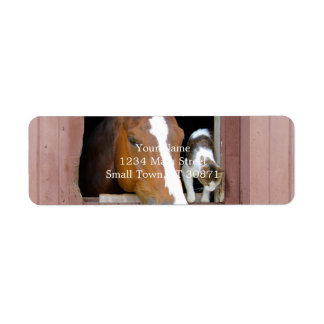Cat and horse - horse ranch - horse lovers label
