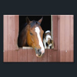 "Cat and horse - horse ranch - horse lovers photo print<br><div class=""desc"">farm , horse , pet , kitty , barn , &quot;cute cats&quot; , stable , &quot;horse farm&quot; , &quot;pet cat &quot;, &quot;cat pet&quot; , </div>"