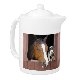 Cat and horse - horse ranch - horse lovers teapot
