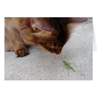 Cat and Katydid Friendship Card
