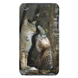 Cat and Kitten by Tree iPod Touch Case