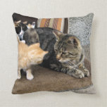 Cat and Kittens Staring at each other Pillows