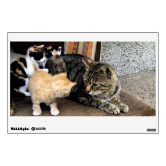 Cat and Kittens Staring at each other Wall Decal