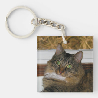 Cat and Matching Background Keychain