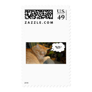 Cat and Mouse Humor Stamp