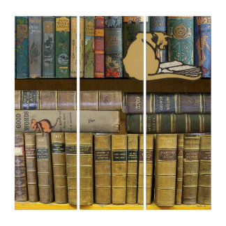 Cat and Mouse Library Triptych
