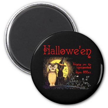 Halloween Themed Cat and Owl Magnet