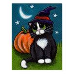 Cat and Pumpkin Postcard