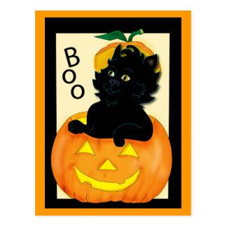 cat-and-pumpkin post card