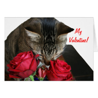 Cat and Roses Valentine Card