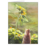 Cat and Sunflower Cards