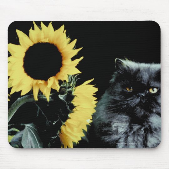 Cat and Sunflower Mouse Pad