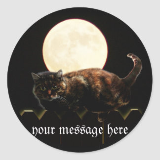 Cat and the Full Moon Round Stickers