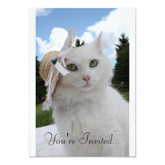 Cat and the Hat 5x7 Paper Invitation Card