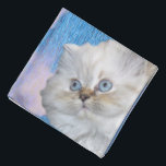 "Cat and Water Bandana<br><div class=""desc"">Cute white persian cat with blue eyes. Blue water and sky with white clouds.</div>"