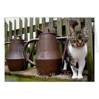 Cat and Watering Cans / Birthday Card
