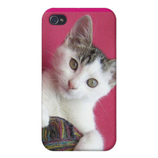 Cat and Yarn iPhone 4/4S Cases