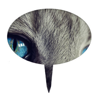 Cat Animal Cat's Eyes Eyes Pet View Blue Eye Cake Topper