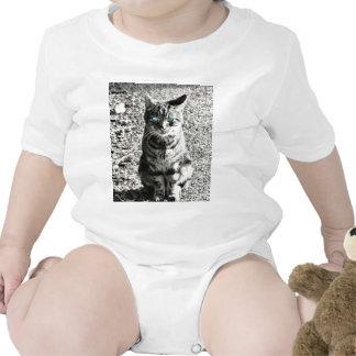 Cat Animal Pet Baby Bodysuit