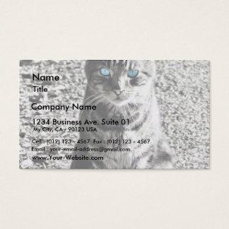 Cat Animal Pet Business Card