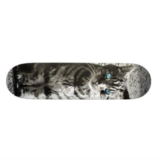 Cat Animal Pet Custom Skateboard