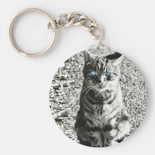 Cat Animal Pet Key Chain
