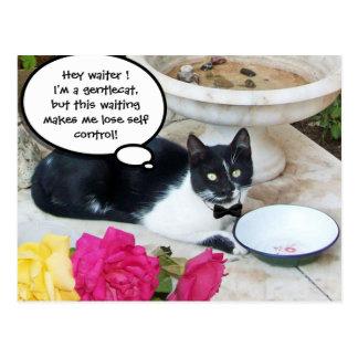 CAT APACIBLE EN el feliz cumpleaños del RESTAURANT Tarjeta Postal