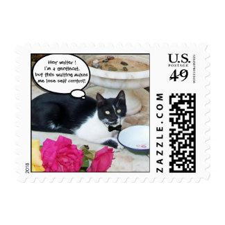 CAT APACIBLE EN el feliz cumpleaños del Sellos Postales
