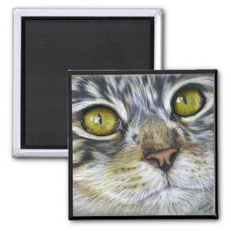 Cat Art - Blink Magnets